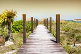 Cuba Fuerte Collection - Wild Beach Jetty at Sunset