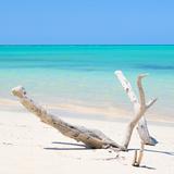Cuba Fuerte Collection SQ - Lost Paradise
