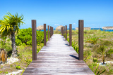 Cuba Fuerte Collection - Wild Beach Jetty