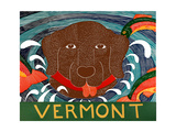 Fish Are Jumping Vermont Choc