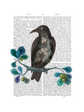 Floral Crow On Branch Reproduction d'art par Fab Funky