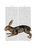 Hare and Black Leaves Reproduction d'art par Fab Funky