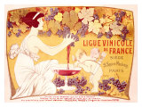 Ligue Vinicole de France