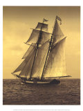 Under Sail II