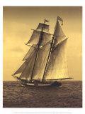 Under Sail II