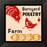Barnyard Poultry-Farm Eggs