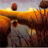 Silent Meadow II