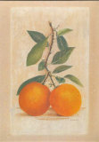 Two Oranges