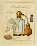 Aromatherapie  Lavande