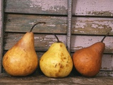 Studio-Pears