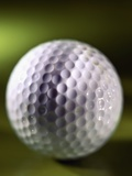 Close-up of Golf Ball