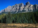 Forest and Castle Mountain