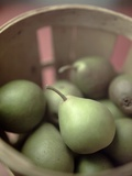 Basket of Seckel Pears