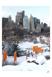 The Gates and Wollman Rink  Central Park