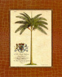 Date Palm