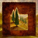 Warm Cypress I