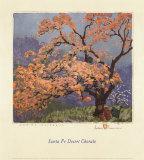Fleurs de printemps Reproduction d'art par Gustave Baumann
