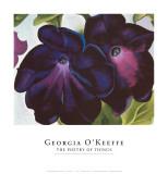 Pétunia noir et mauve,1925 Reproduction d'art par Georgia O'Keeffe