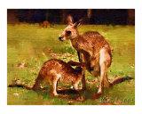 A Baby Kangaroo Drinking Milk