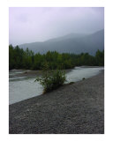 Mendenhall River view