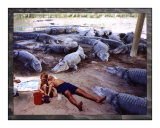 Vacation with Alligators