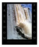 Freedom - Iguazu Falls  Argentina