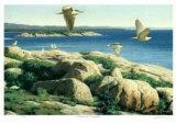 St Lawrence Archipelago
