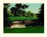 Merion  16