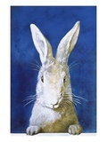 Magazine Cover Depicting a Rabbit by Frank S Guild