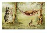 Postcard of Relaxing Rabbits