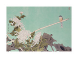 Chrysanthemum and Bird
