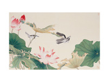 Birds by Lotus Pond Giclée par Hsi-Tsun Chang