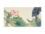 Lotus and Birds Giclée par Hsi-Tsun Chang