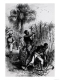"Slaves Working on a Plantation  from Cassell's ""History of the United States"""