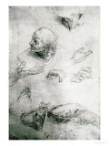Studies for the Figure of Bramante (1444-1515)