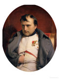 Napoleon (1769-1821) in Fontainebleau  1846