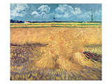 Wheatfield with Sheaves  1888 (Oil on Canvas)