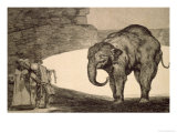 Folly of Beasts  from the Follies Series  or Other Laws for the People  circa 1815-24