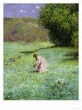 Woodland Meadow  1876