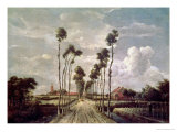 The Avenue at Middelharnis  1689