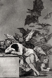 The Sleep of Reason Produces Monsters  from &quot;Los Caprichos&quot;