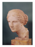 The Kauffmann Head  Head of Aphrodite  Copy of the Aphrodite of Cnidus by Praxiteles (Fl375-40 BC)