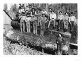 Woodcutters in California  1891