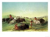 Buffalo Hunt  Plate 7 from Catlin's North American Collection  Engraved by Mcgahey