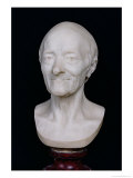 Bust of Voltaire (1694-1778) Without His Wig  1778
