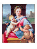 The Aldobrandini Madonna or the Garvagh Madonna  circa 1509-10