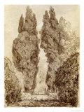 Large Cypresses at the Villa D'Este
