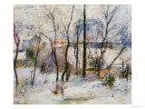 Garden under Snow  1879