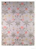 &quot;Daisy&quot; Wallpaper Design  1864