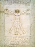 Vitruvian Man  c1492